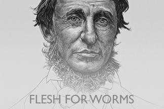 Flesh For Worms, Vox Populi Gallery, 2010